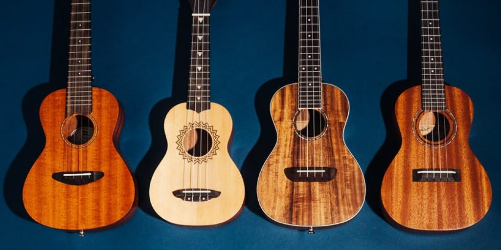 Ukulele Features