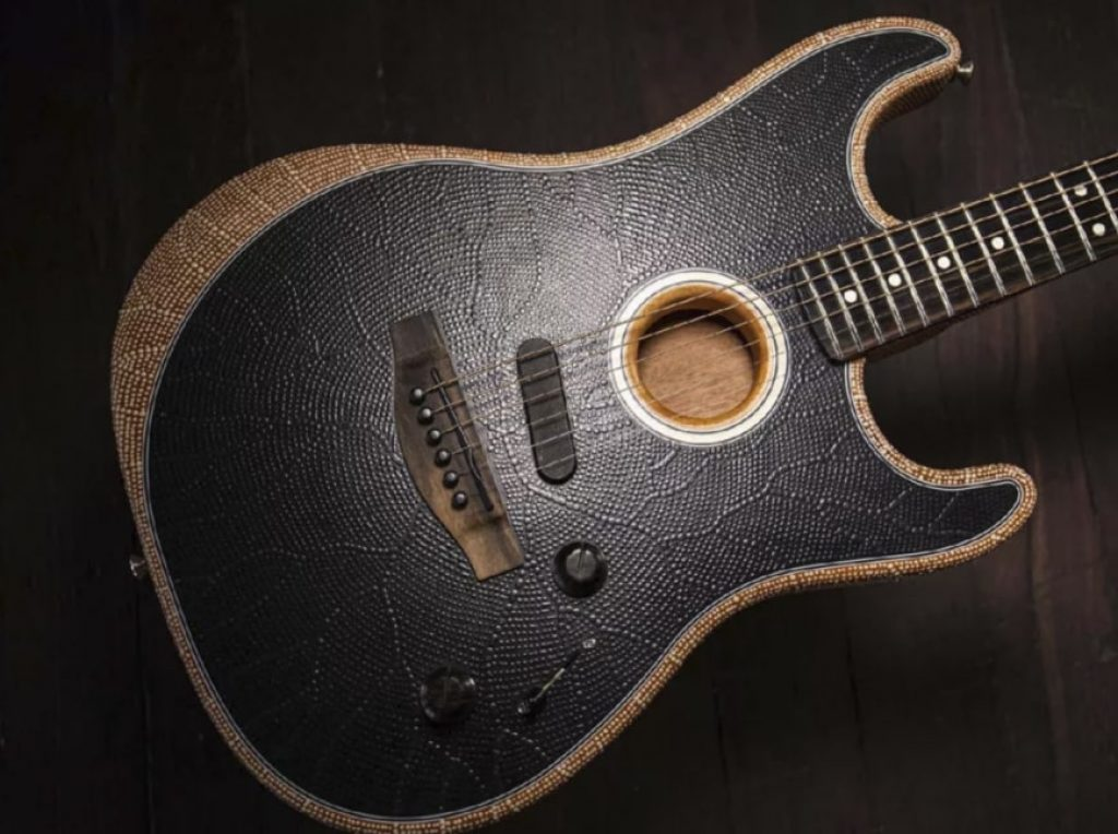Fender company supports cultural diversity